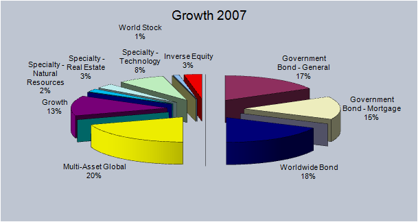2007 Growth Pie